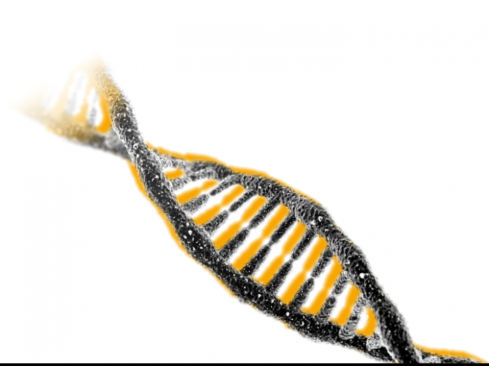 Symbolic image: DNA double helix